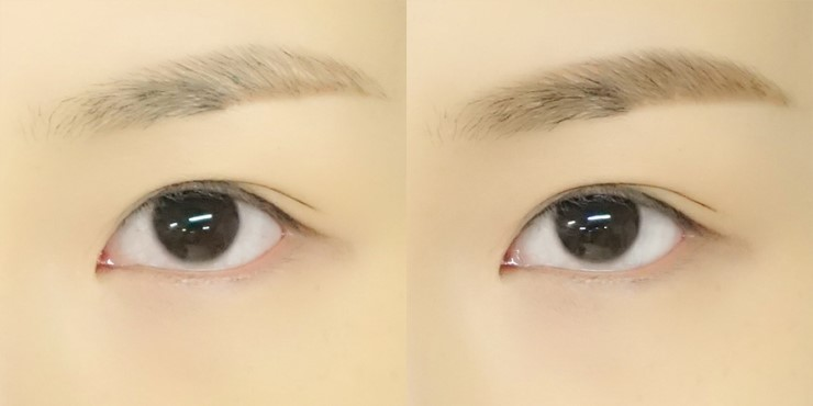 ETUDE HOUSE Drawing Eye Brow Duo review