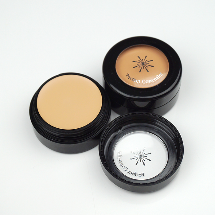 MISSHA The Style Perfect Concealer review