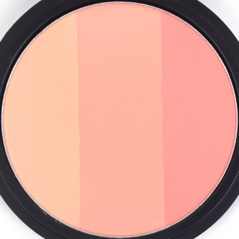 TOO COOL FOR SCHOOL Art Class by Rodin Blusher review