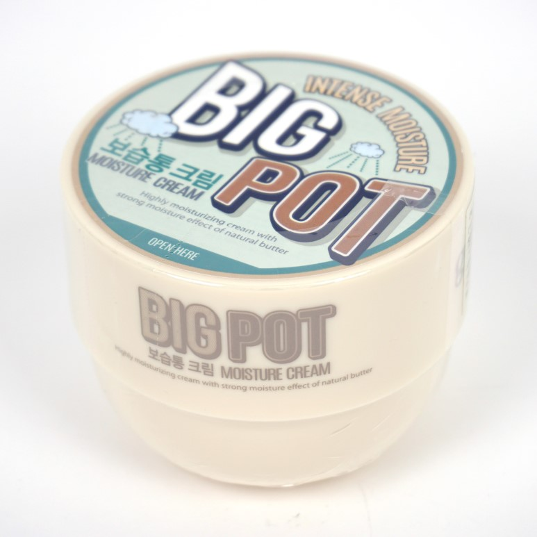 Goodal Big Pot Moisture Cream review